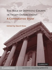 the-role-of-domestic-courts-in-treaty-enforcement